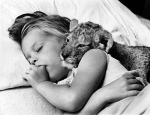 Lion-cub-and-girl-sleeping-together-John-Drysdale-200203
